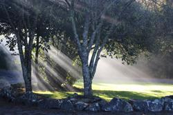 basecamp-salamis-morning-light